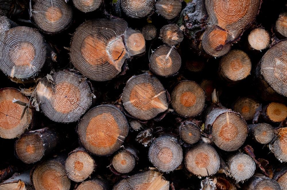 high angle photography of chop logs