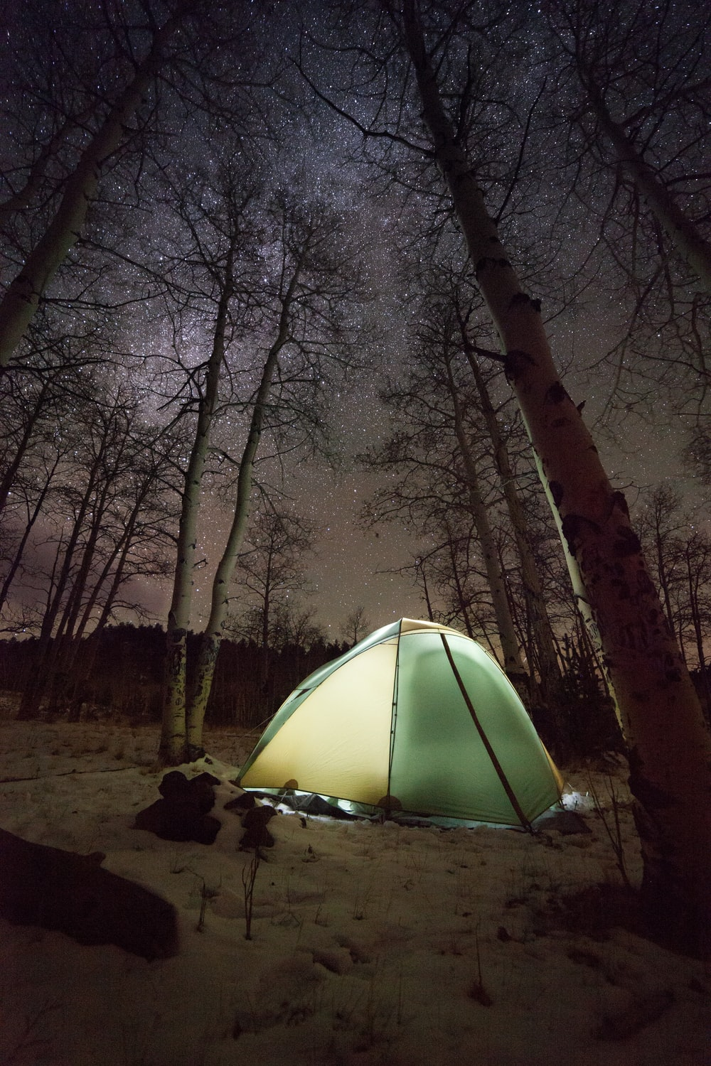 dome tent surrounded with bare trees during night time