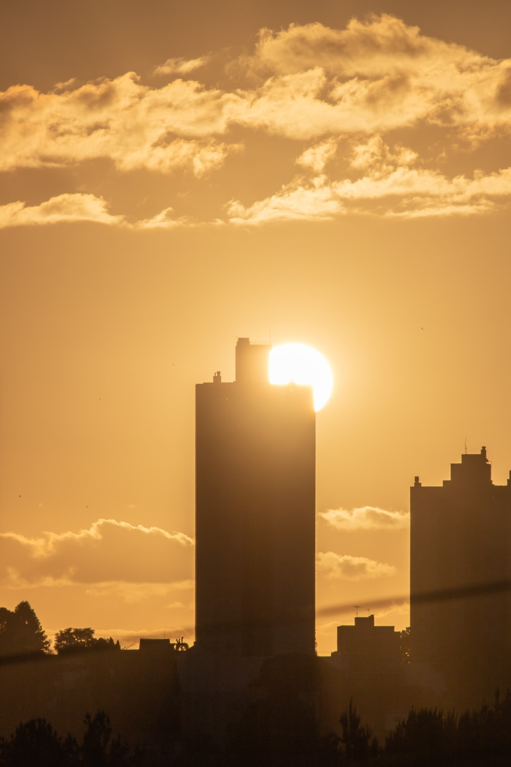 silhouette of high rise buildings during golden hour