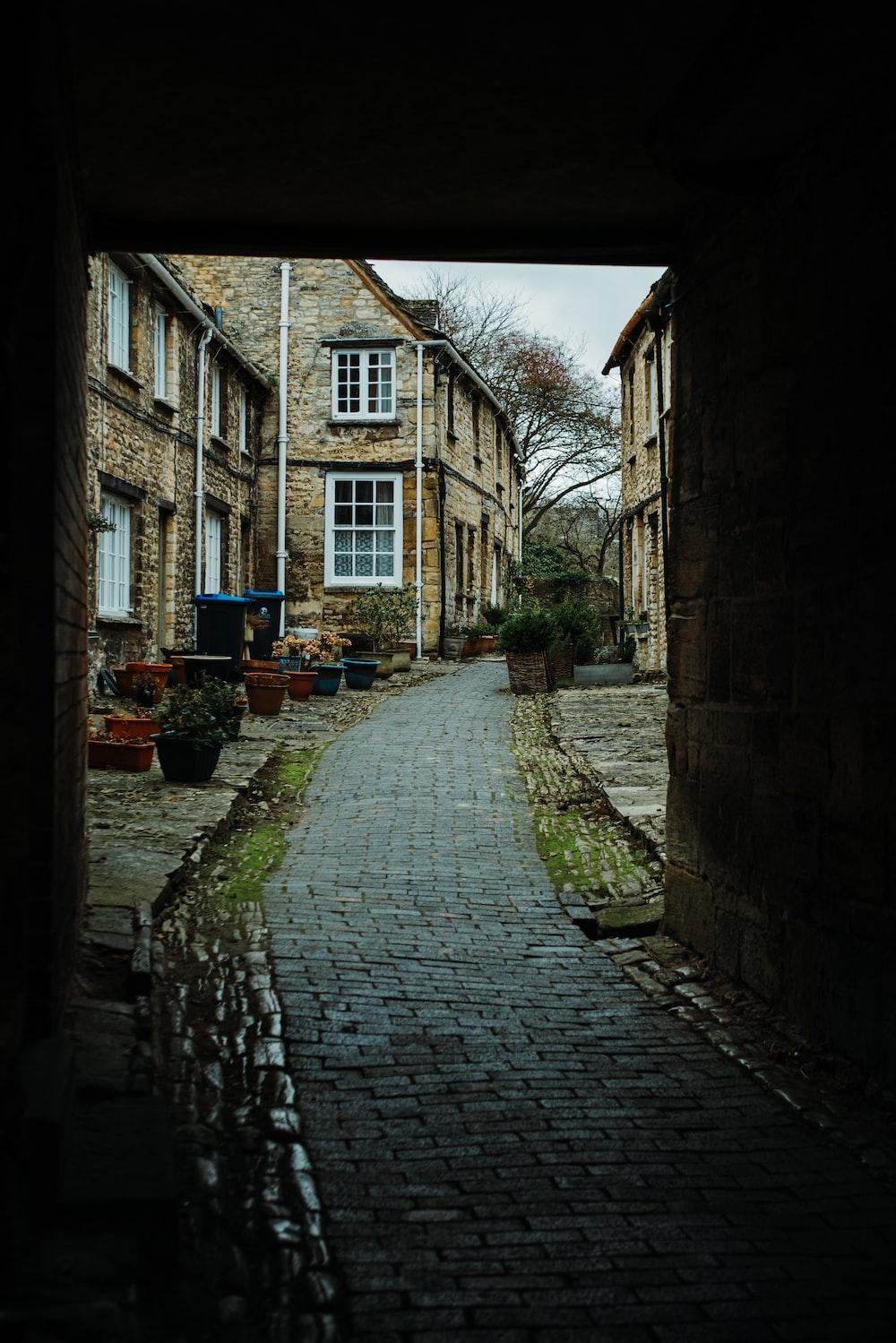 brick pathway in between concrete buildings