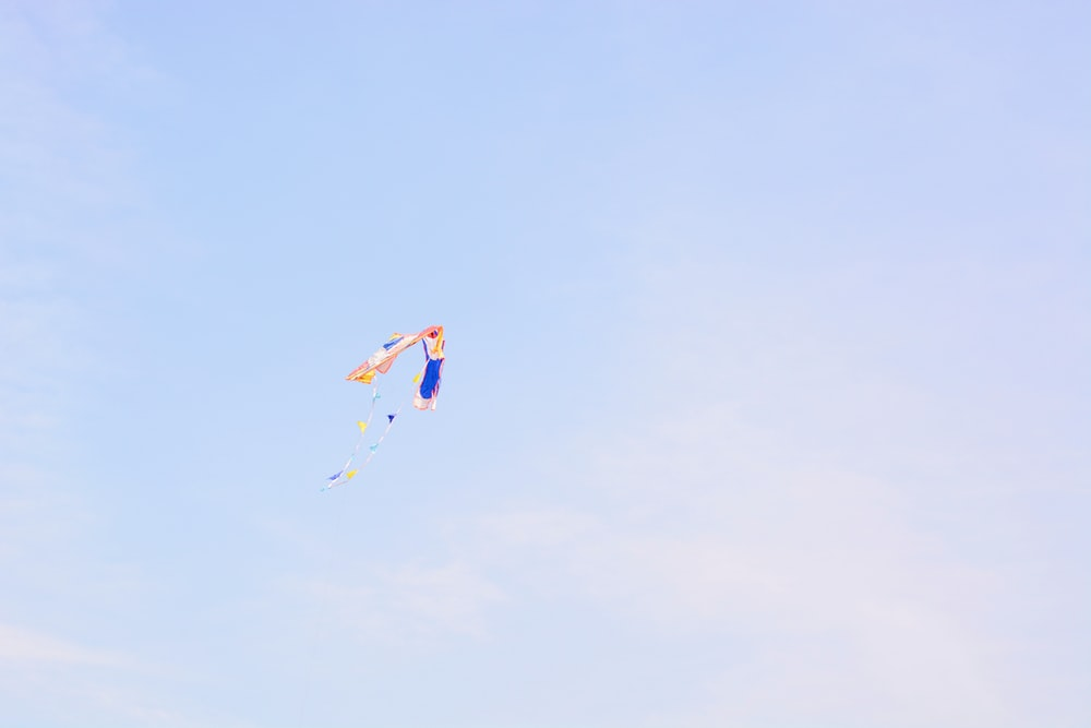 brown and blue kite at daytime