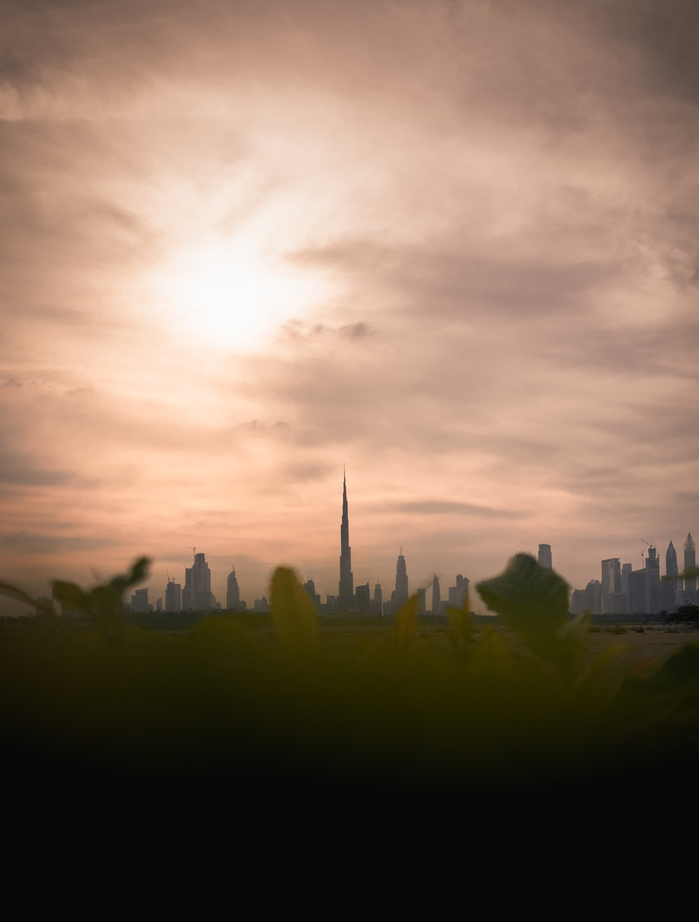 green-leafed plants with Burj Khalifa view during daytime