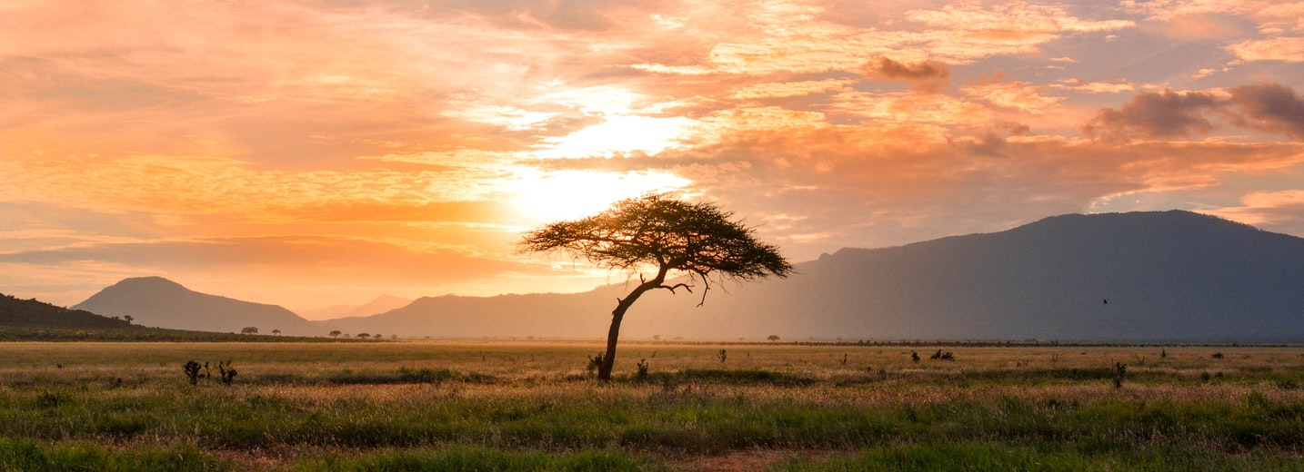 Africa: Mana Pools, Kariba and Victoria Falls