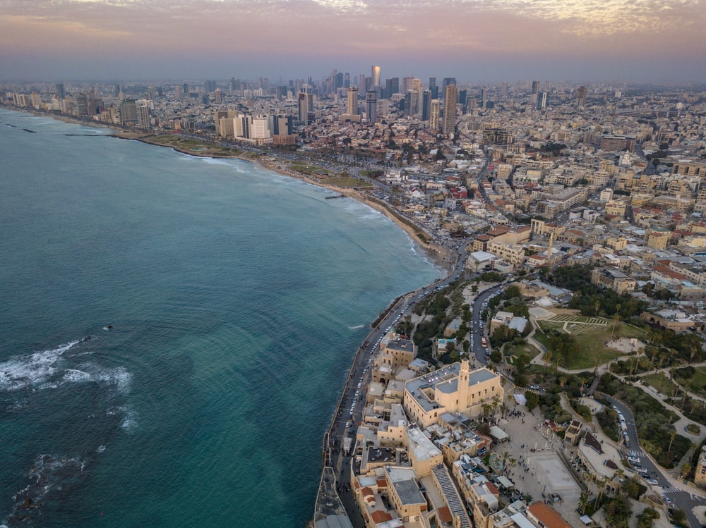aerial photo of city by the sea