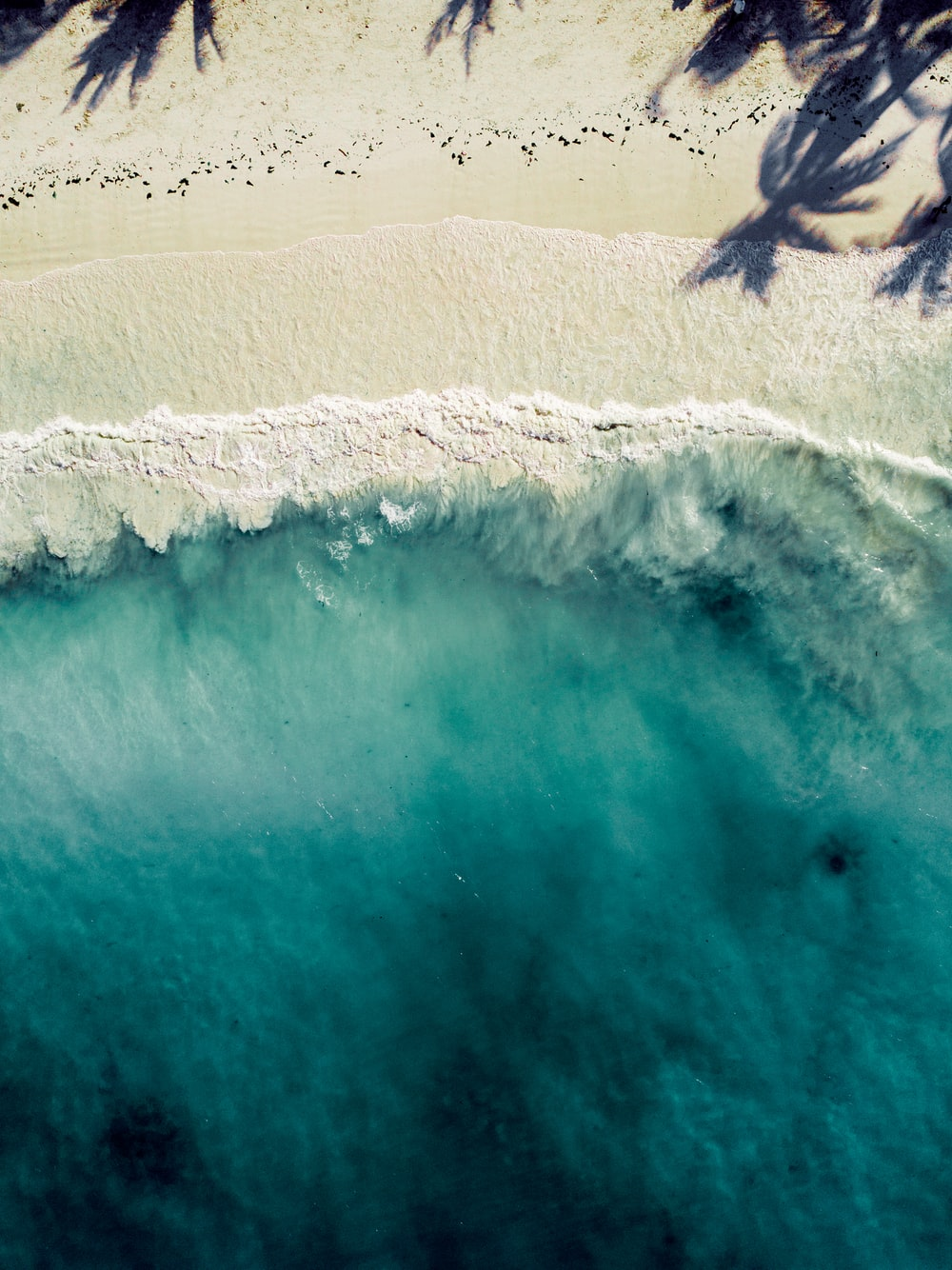 aerial photography of sea shore