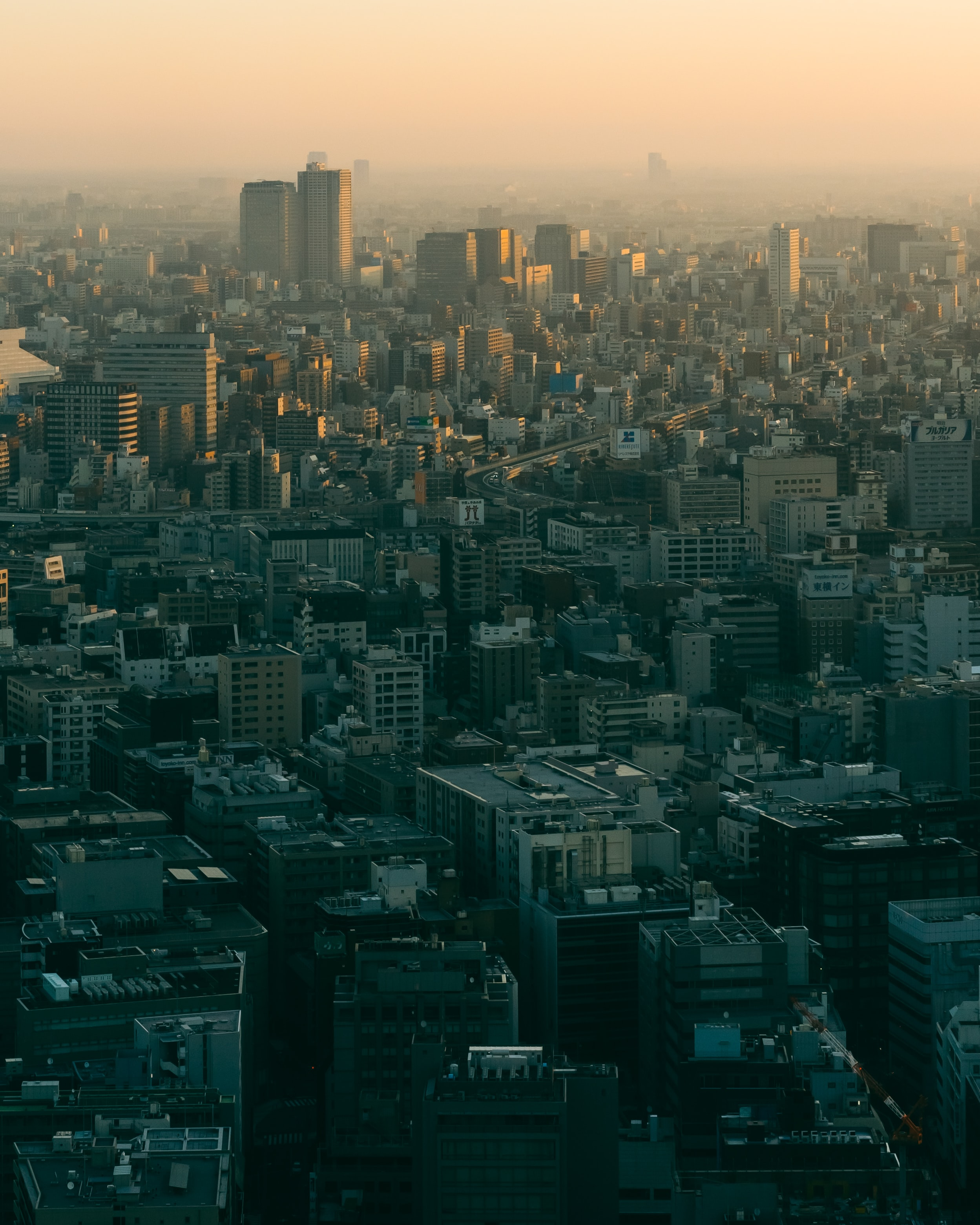 aerial photo of city buildings