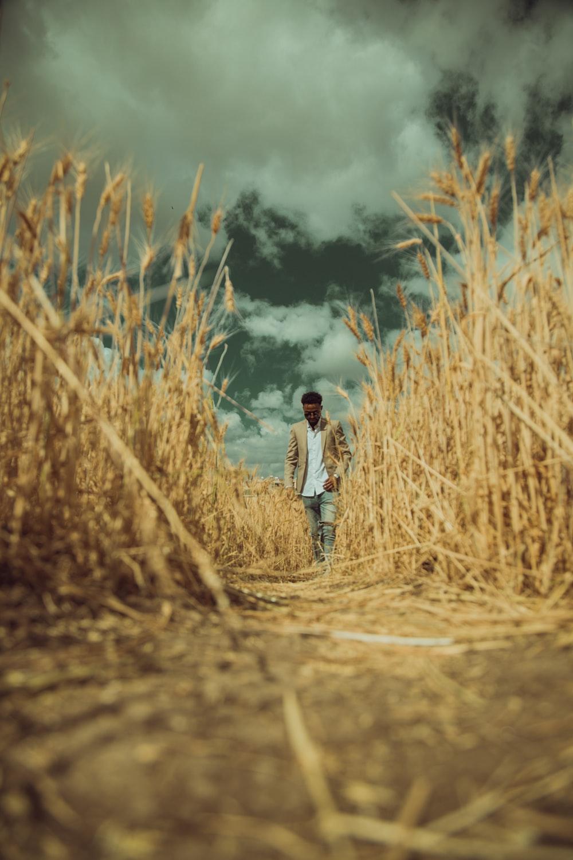 man walking between brown grass