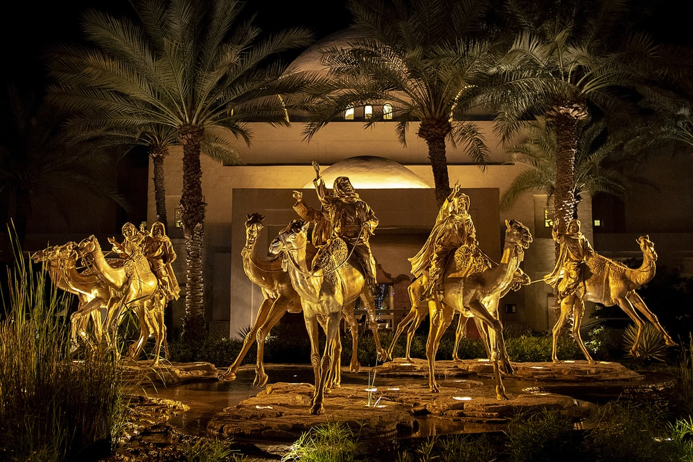 women riding on camel during nighttime