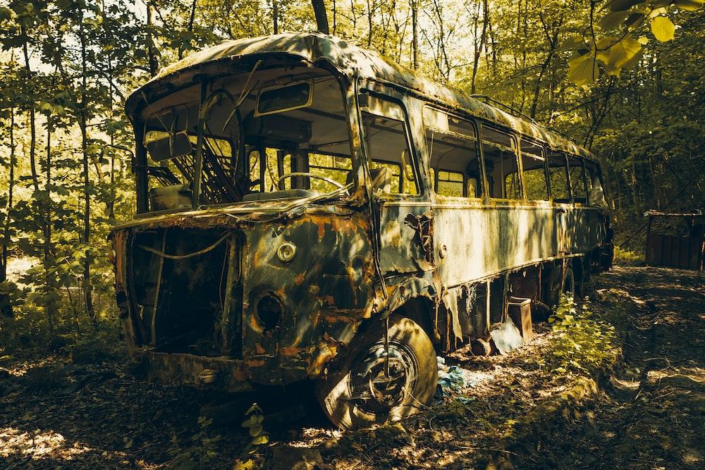 brown abandon bus on woods
