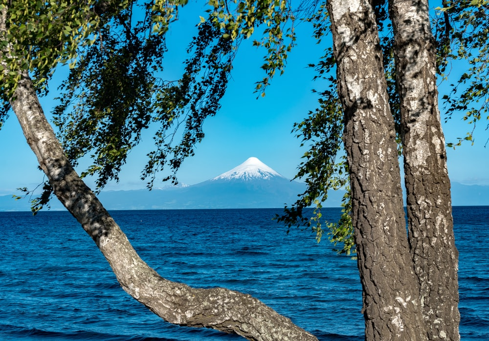 snow capped mountain by the water