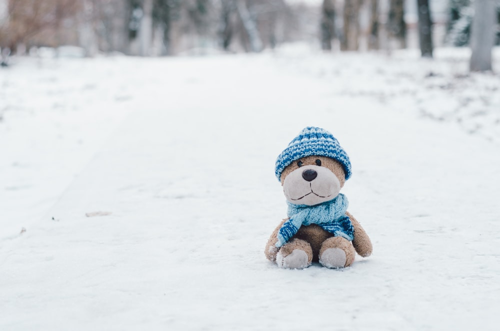 brown bear plush toy wearing blue knitted beanie