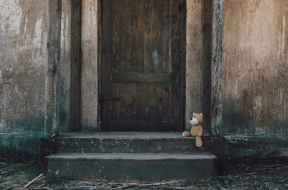 brown bear in the side of door
