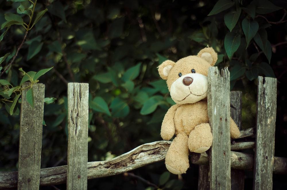 bear plush toy on fence