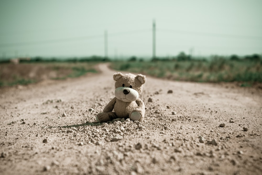 grey bear plush toy at road