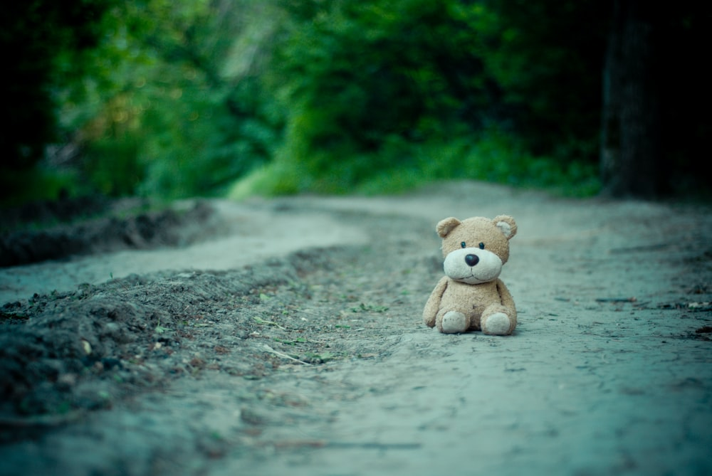 brown dog plush toy on dirt road