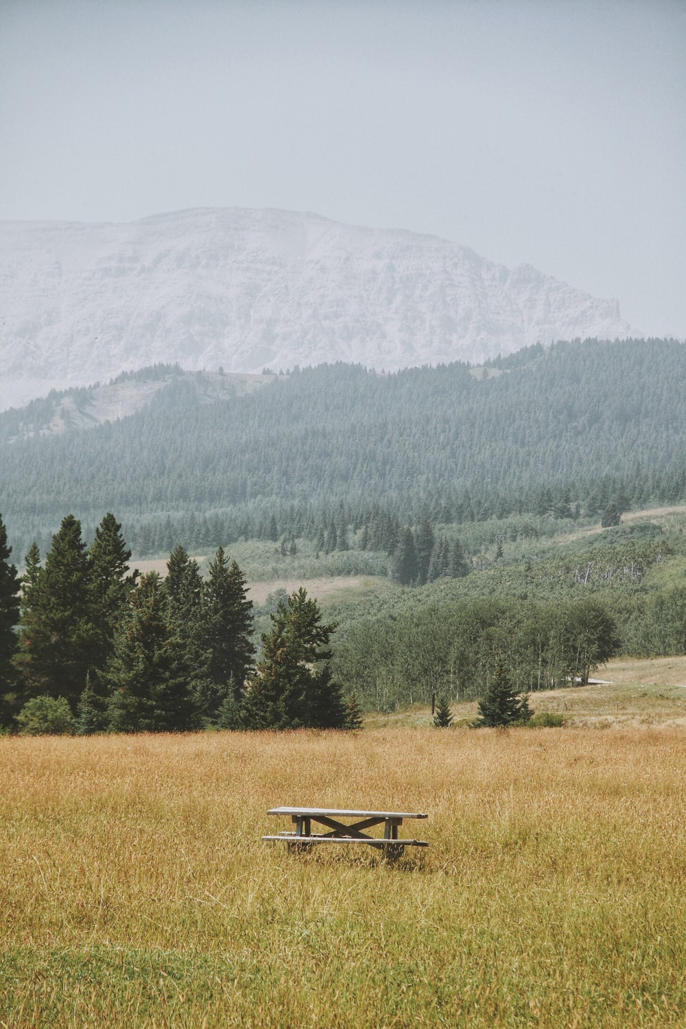 brown wooden bench in middle of open field overlooking mountains
