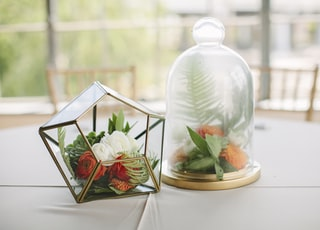 two clear glass table ornaments on table