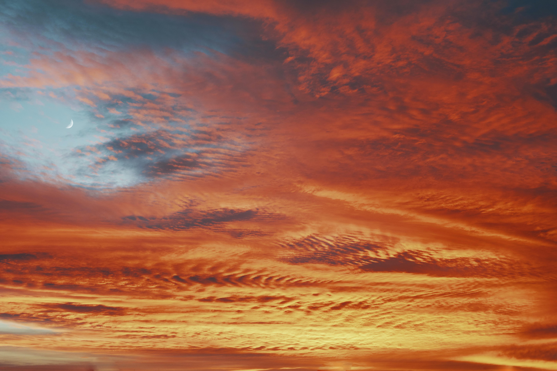 Milky grape sorbet    and orange cream residue.    Look up! Taste the sky.   nature stories