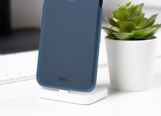 black iPhone Xs with blue case near green succulent plant