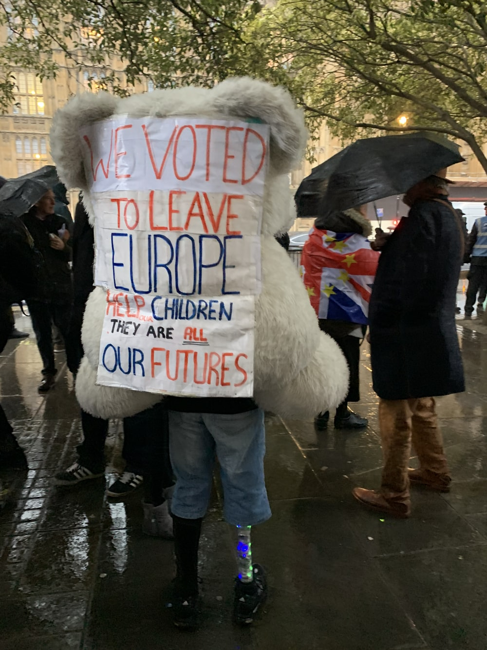person holding we voted to leave Europe signage
