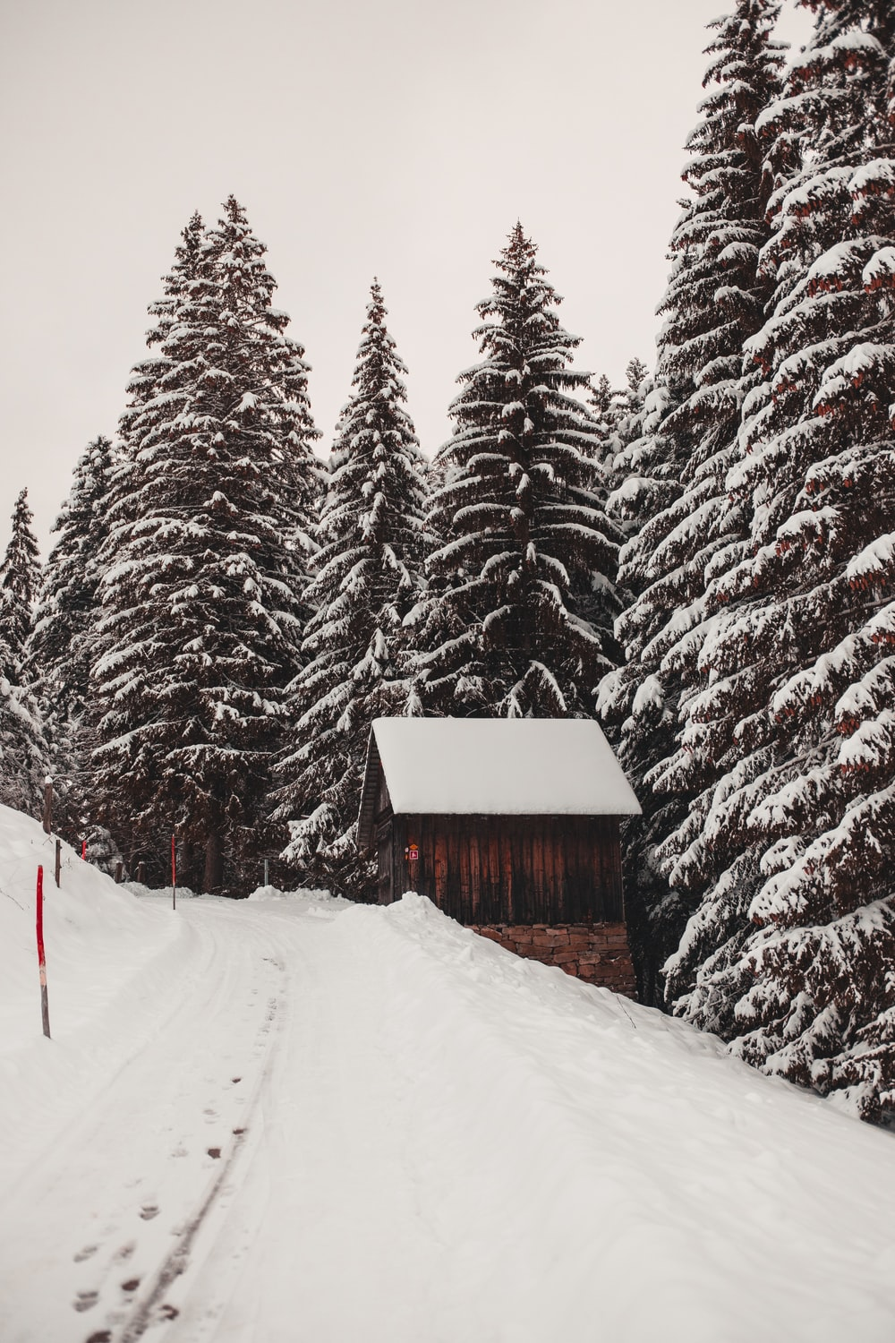 brown house surrounded by pine trees covered with snow