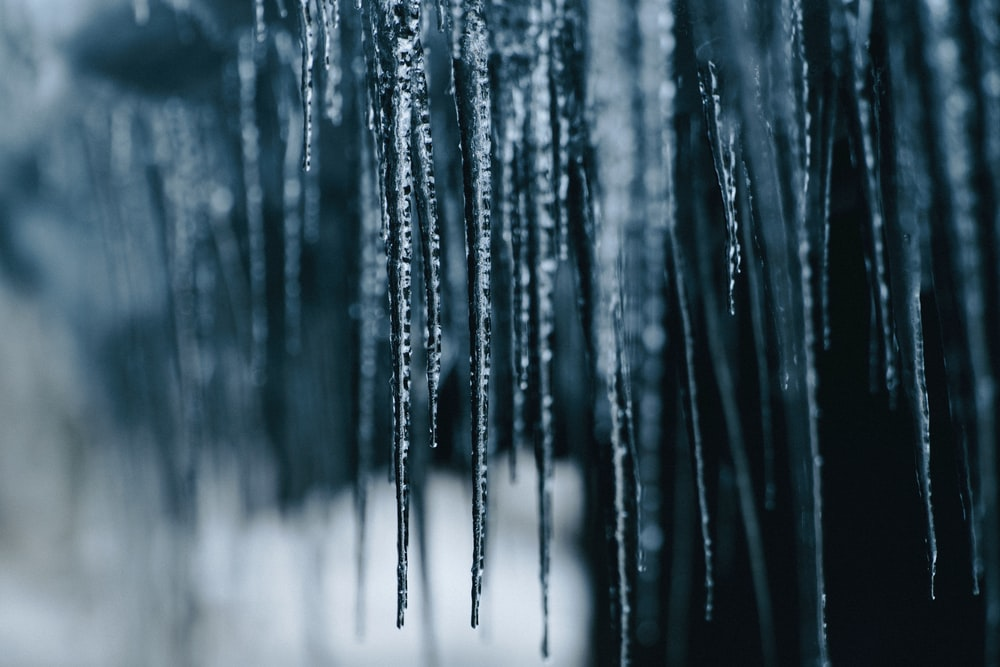 selective focus photography icicles