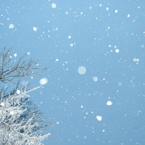 What Winter Can Teach Us About Healing