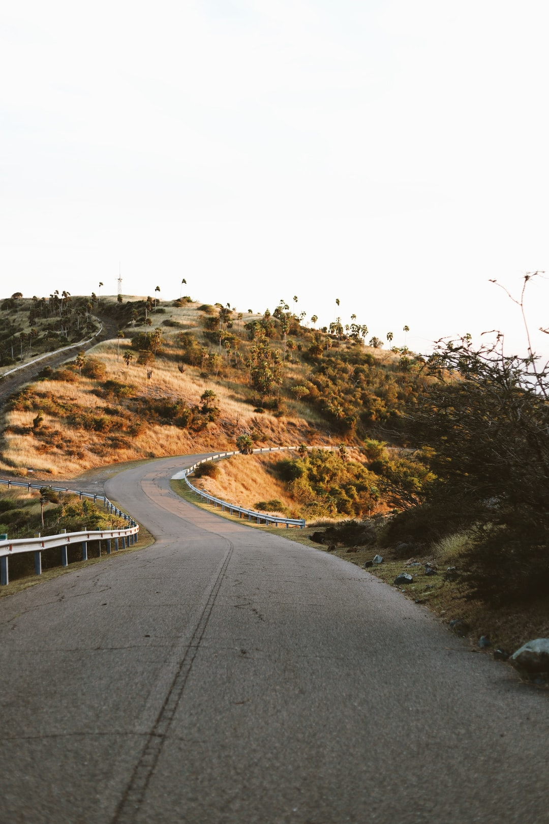 Consejos para disrutar de tu viaje en carretera