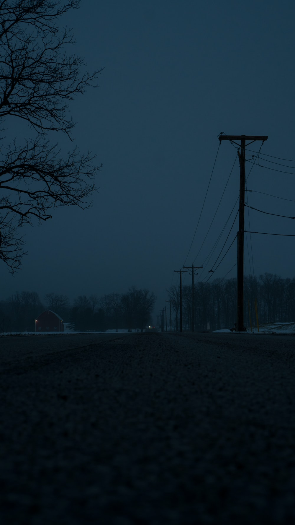 dark field lined with electric poles