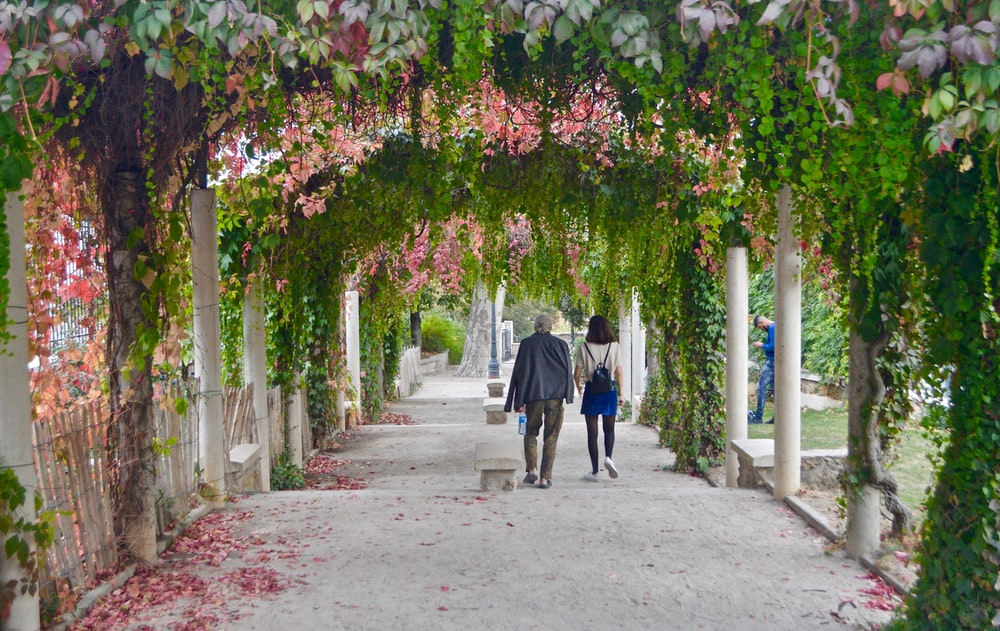 couple walking on pathway with flowering vines