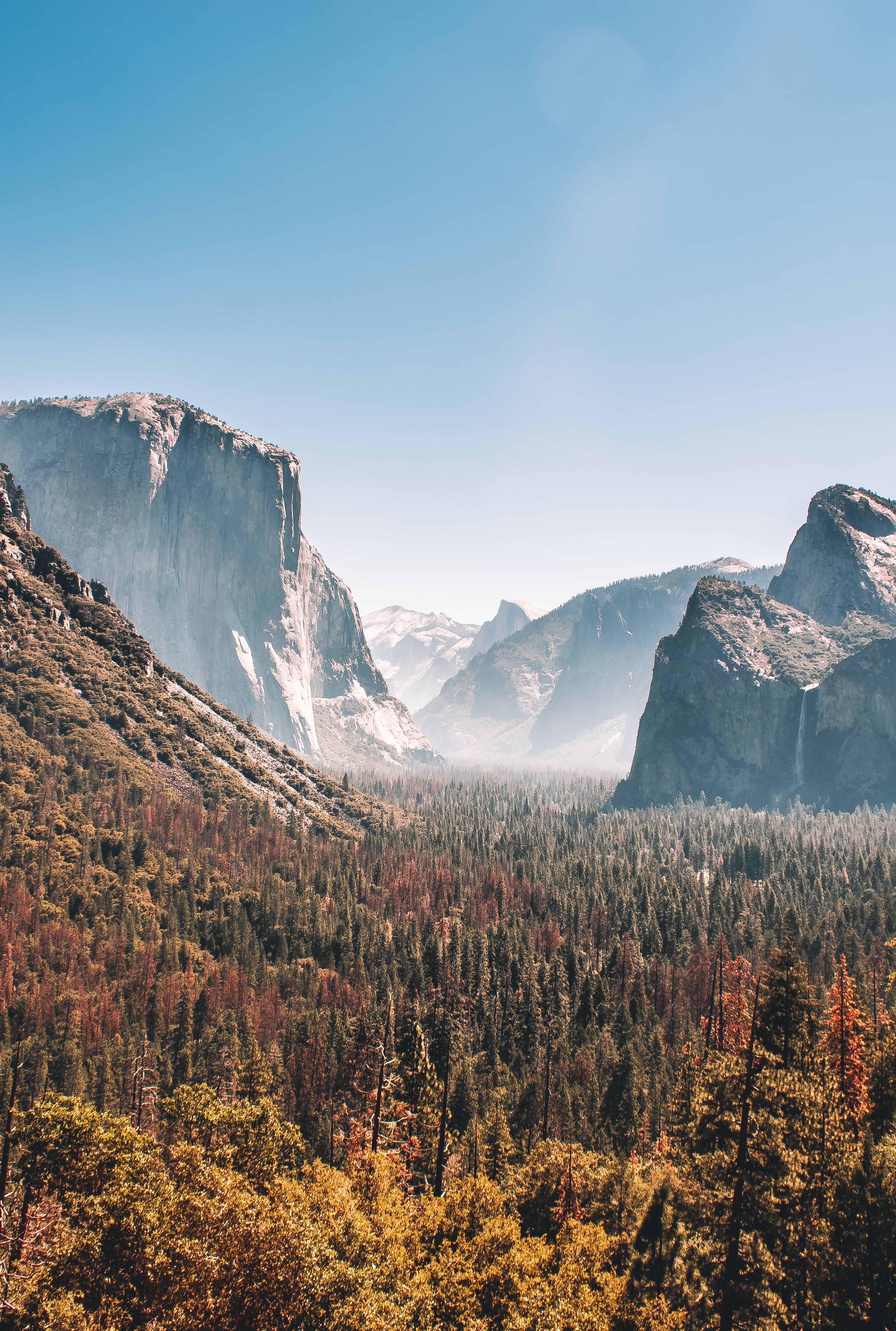 trees near mountains during daytime landscape photo