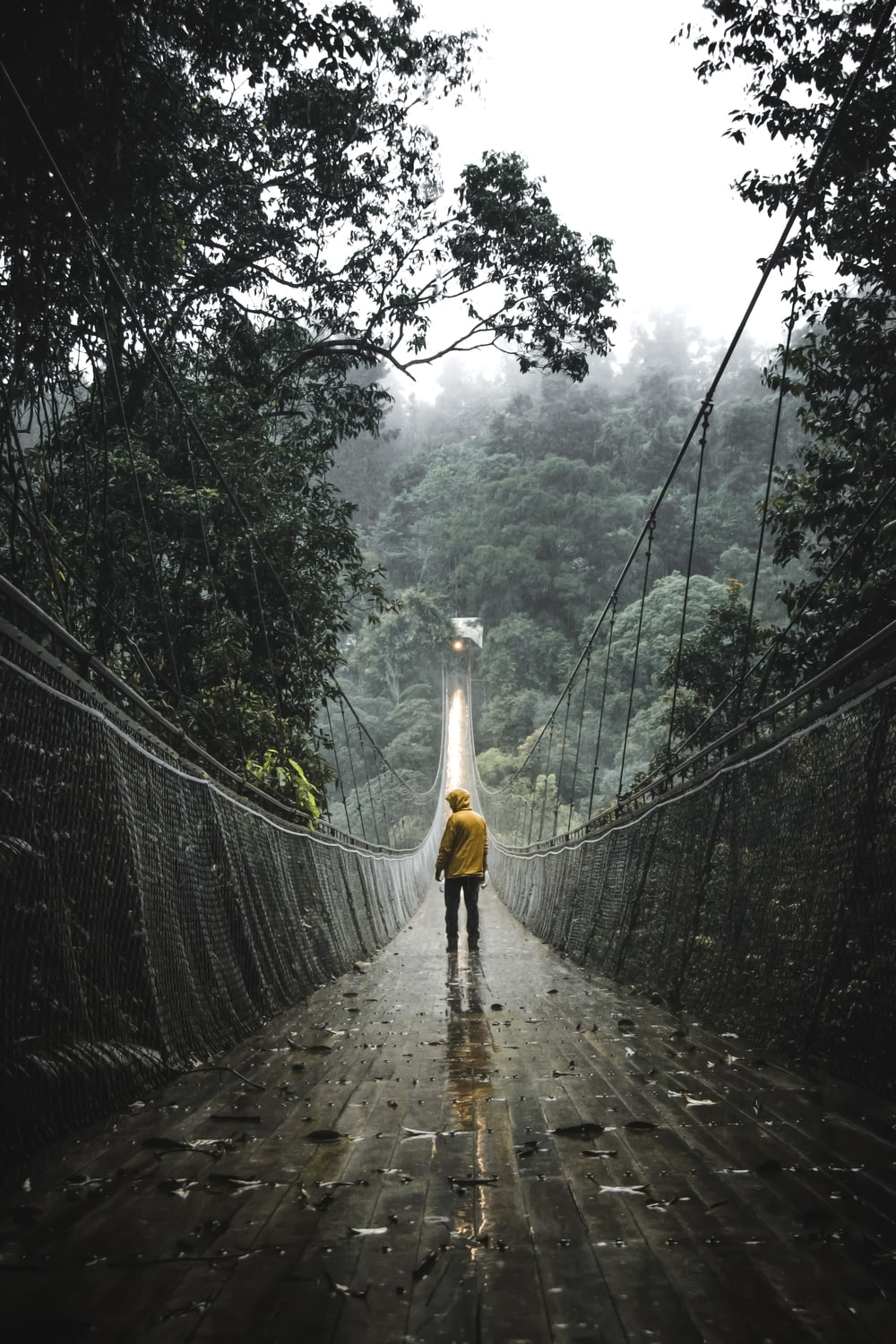 person standing in front of bridge