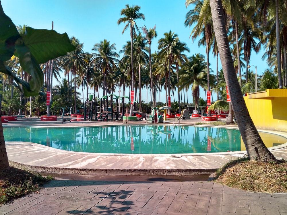 empty seats near pool and coconut trees