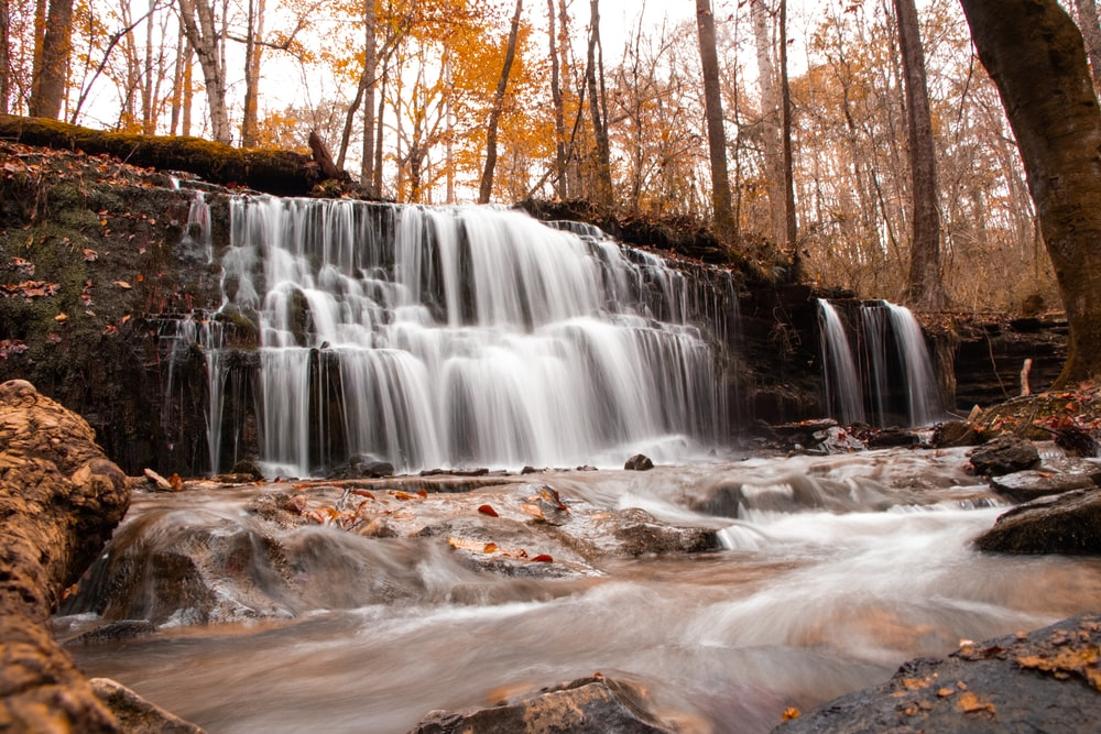 waterfalls surrounded by brown trees