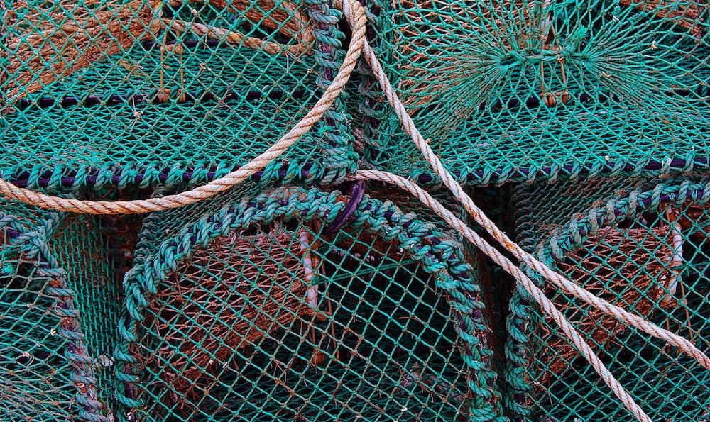 green catching net