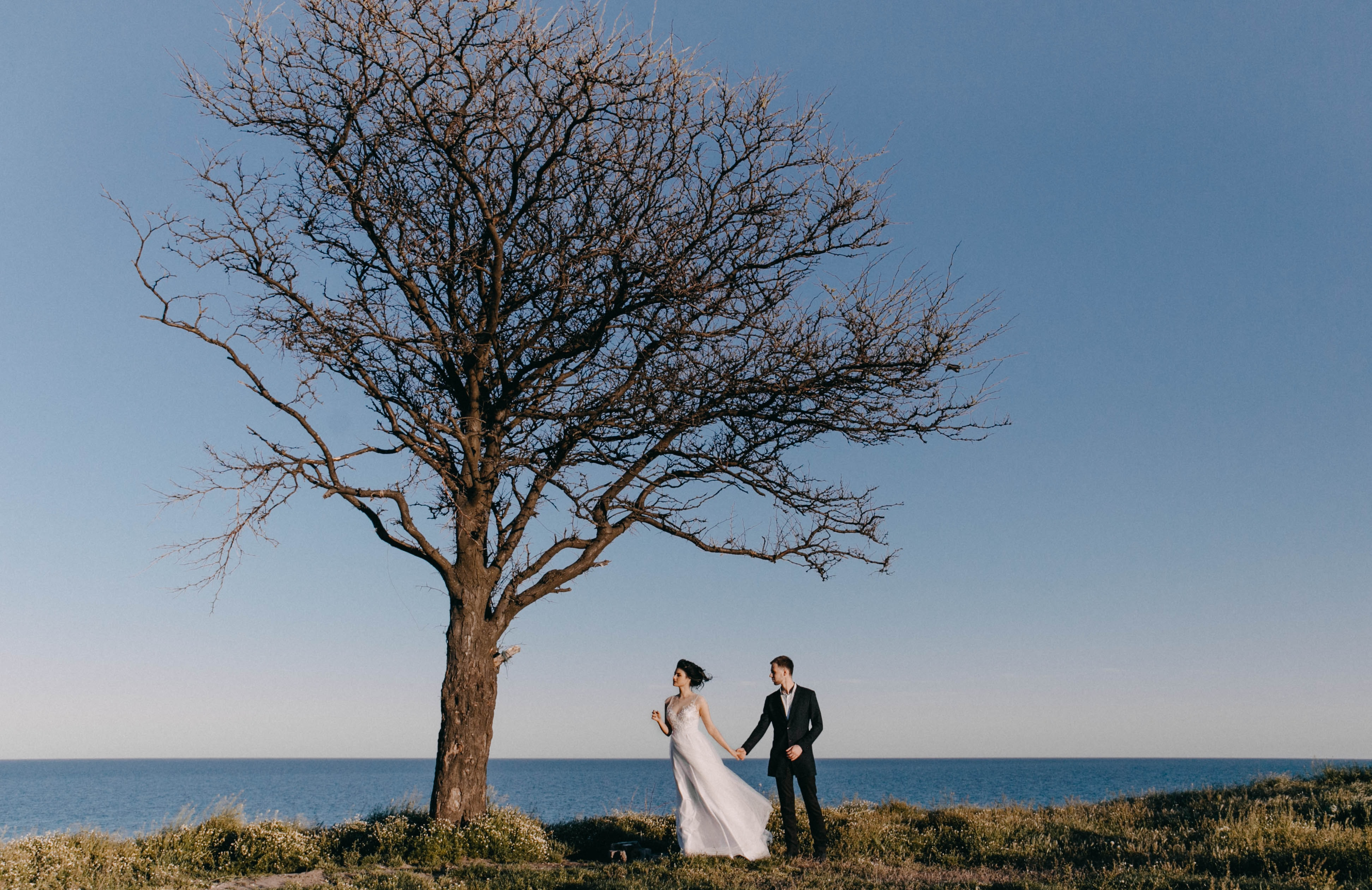 couple standing near the tree during daytime