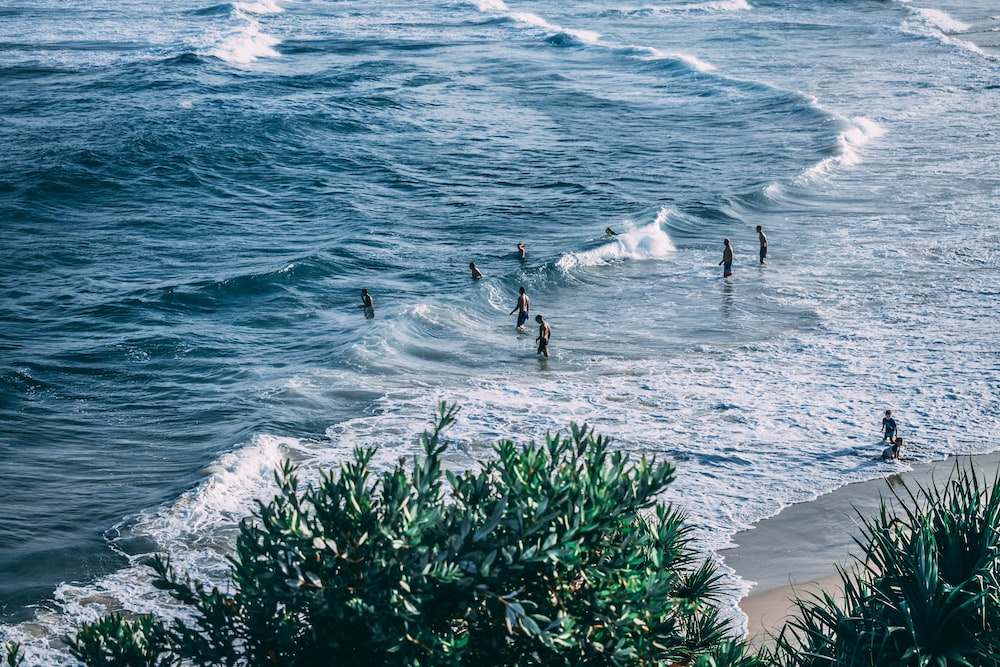 people in sea wave during daytime