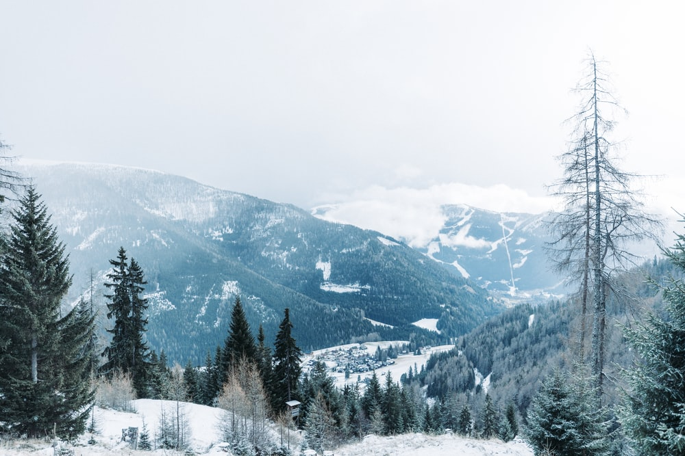 mountain alps covered with snow