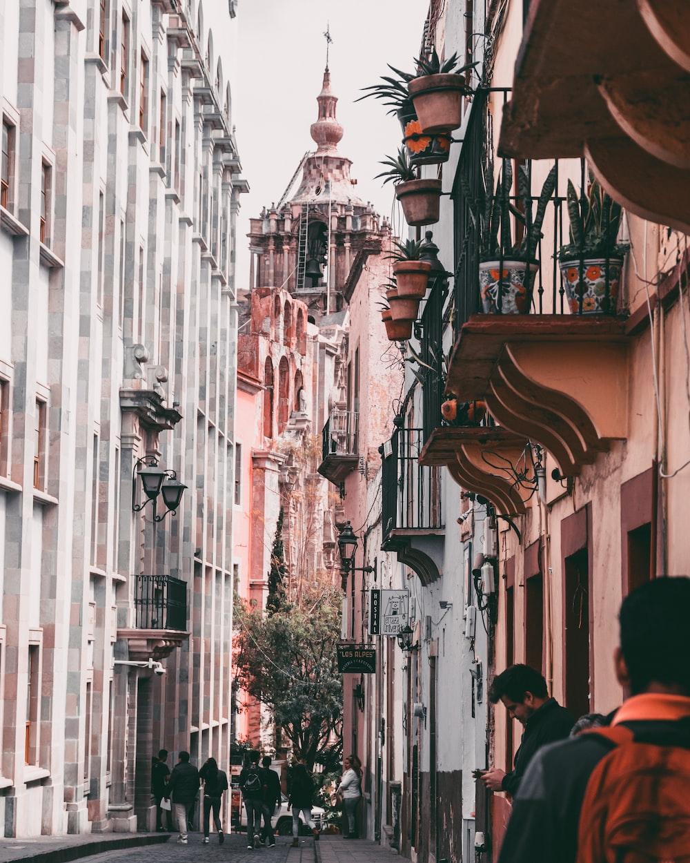 people walking at alley during daytime