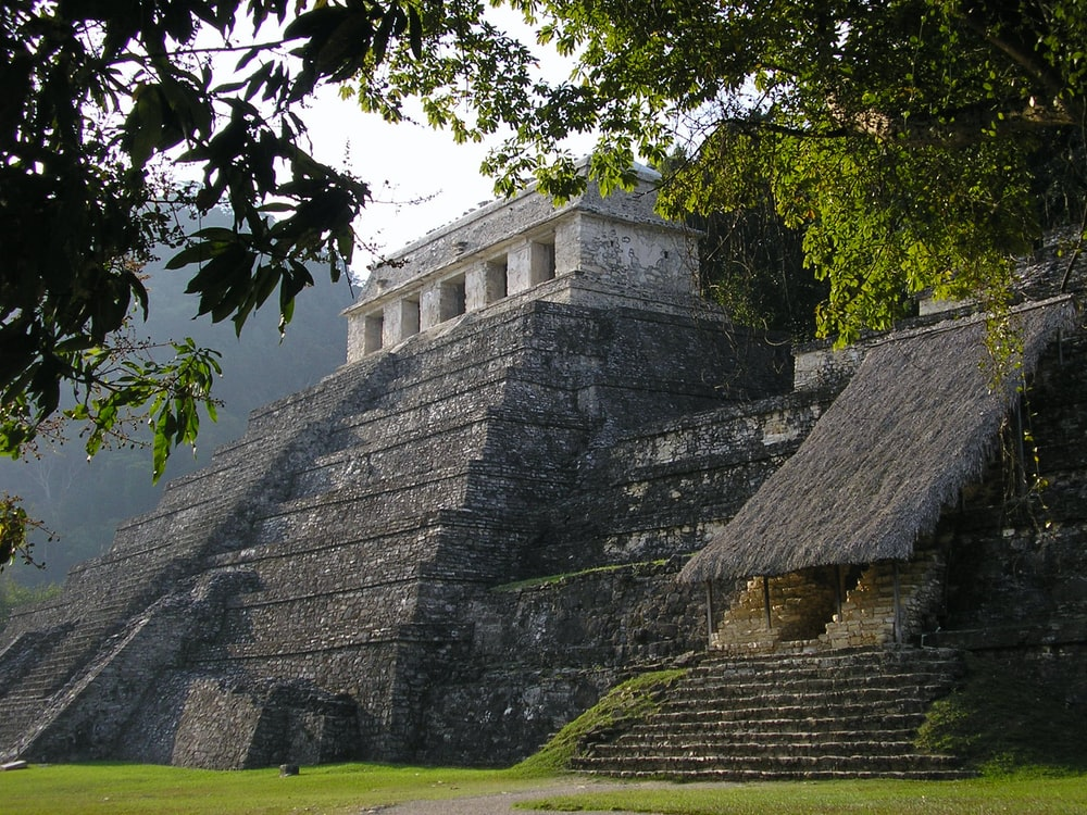 pyramid surrounded by trees