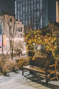 vacant brown wooden bench outdoor