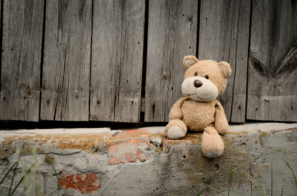 brown bear plush toy on concrete surface