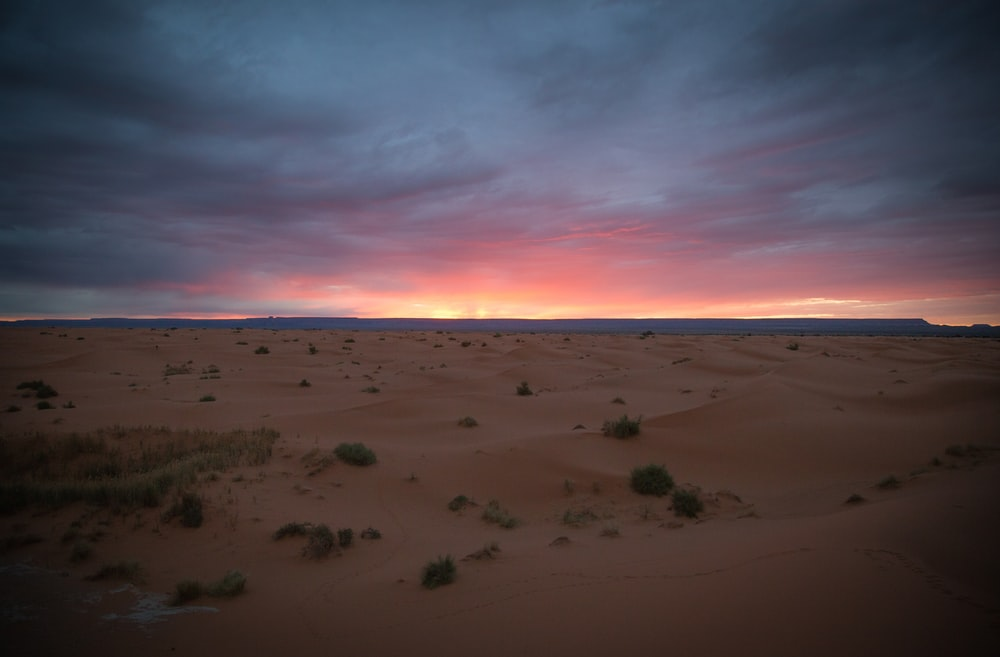view of sand dunes during golden hour