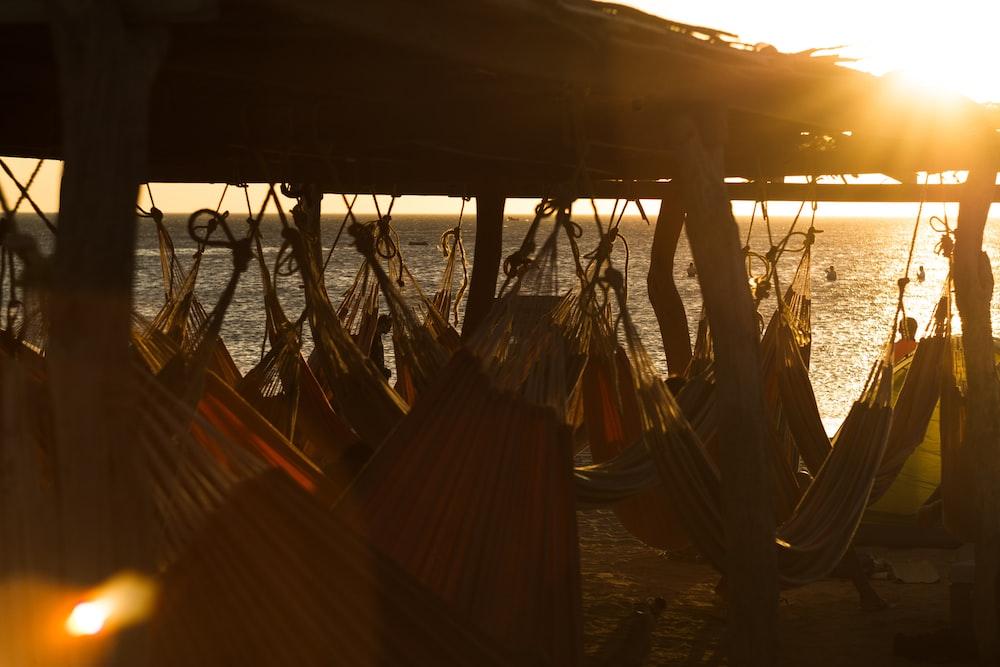 assorted-color hammocks under wooden shed beside sea