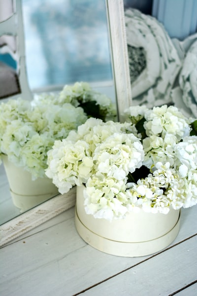 bouquet of white cluster flowers