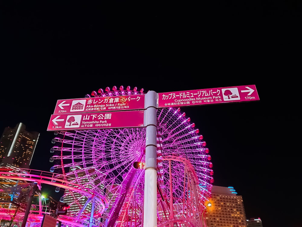 pink and white ferris wheel