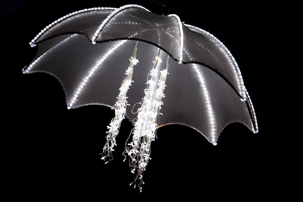 white and black umbrella