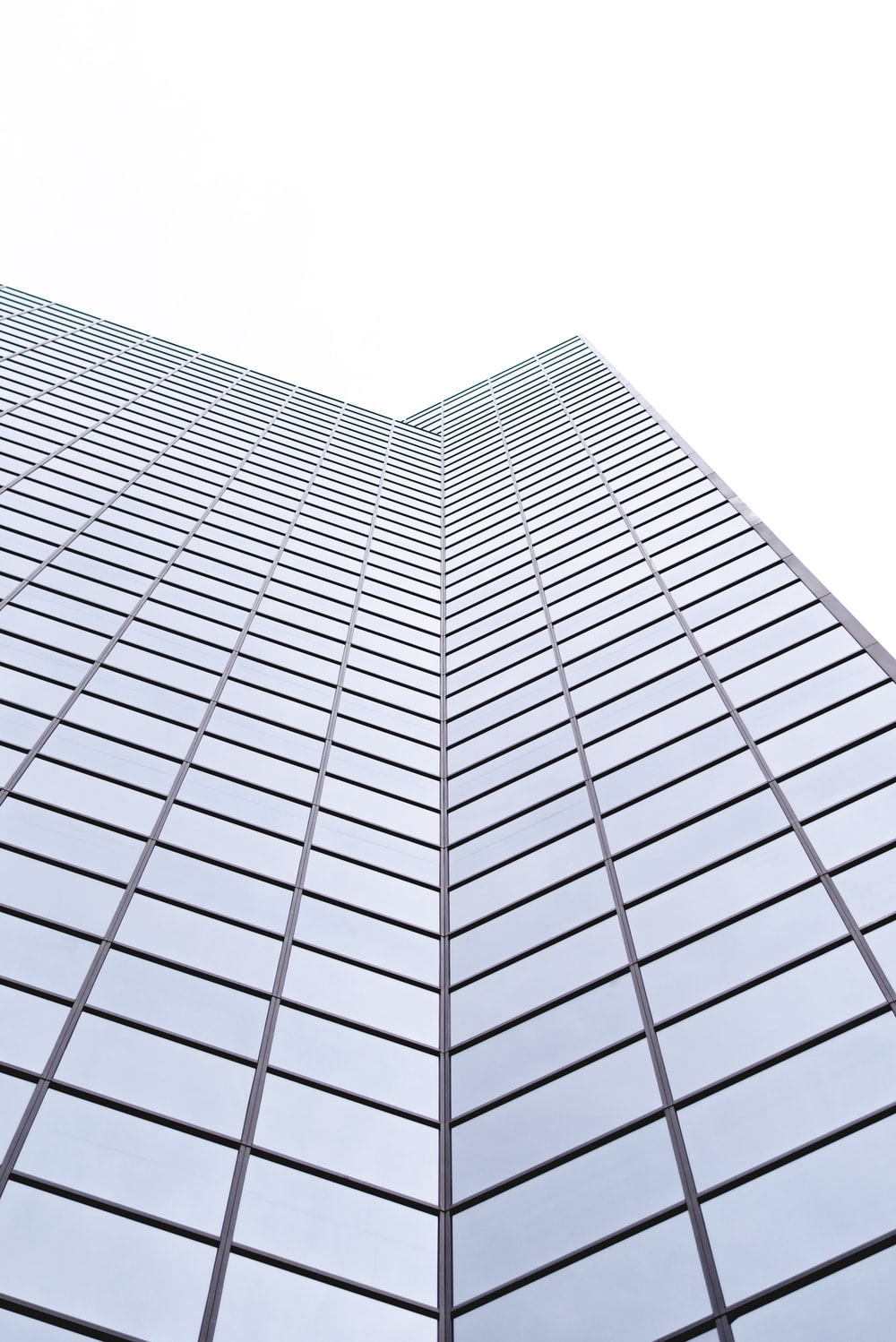 low-angle photography of glass high rise building