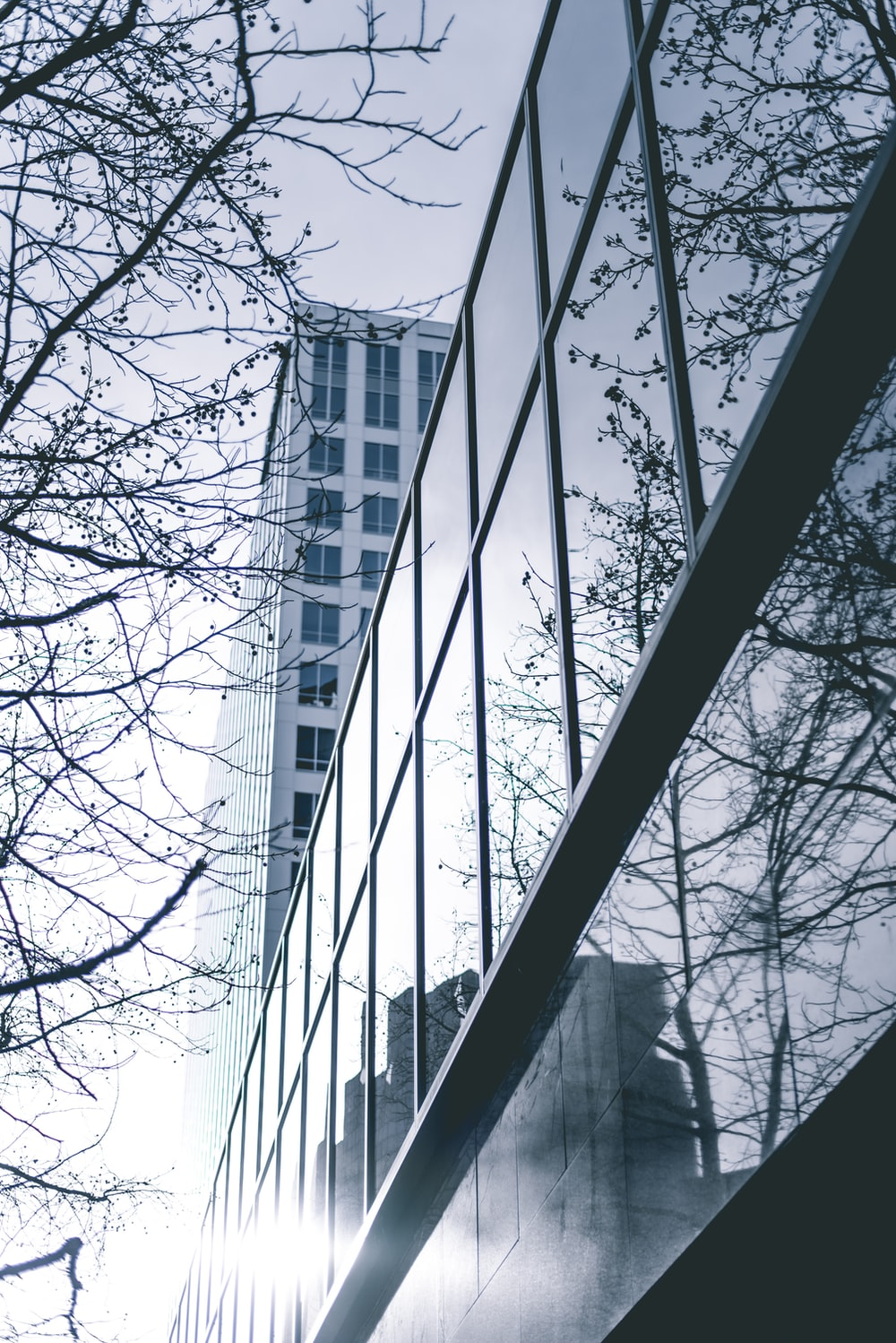 high rise building at daytime