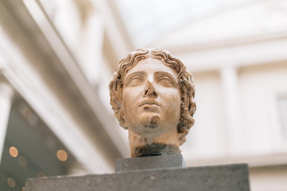 male Grecian bust inside museum